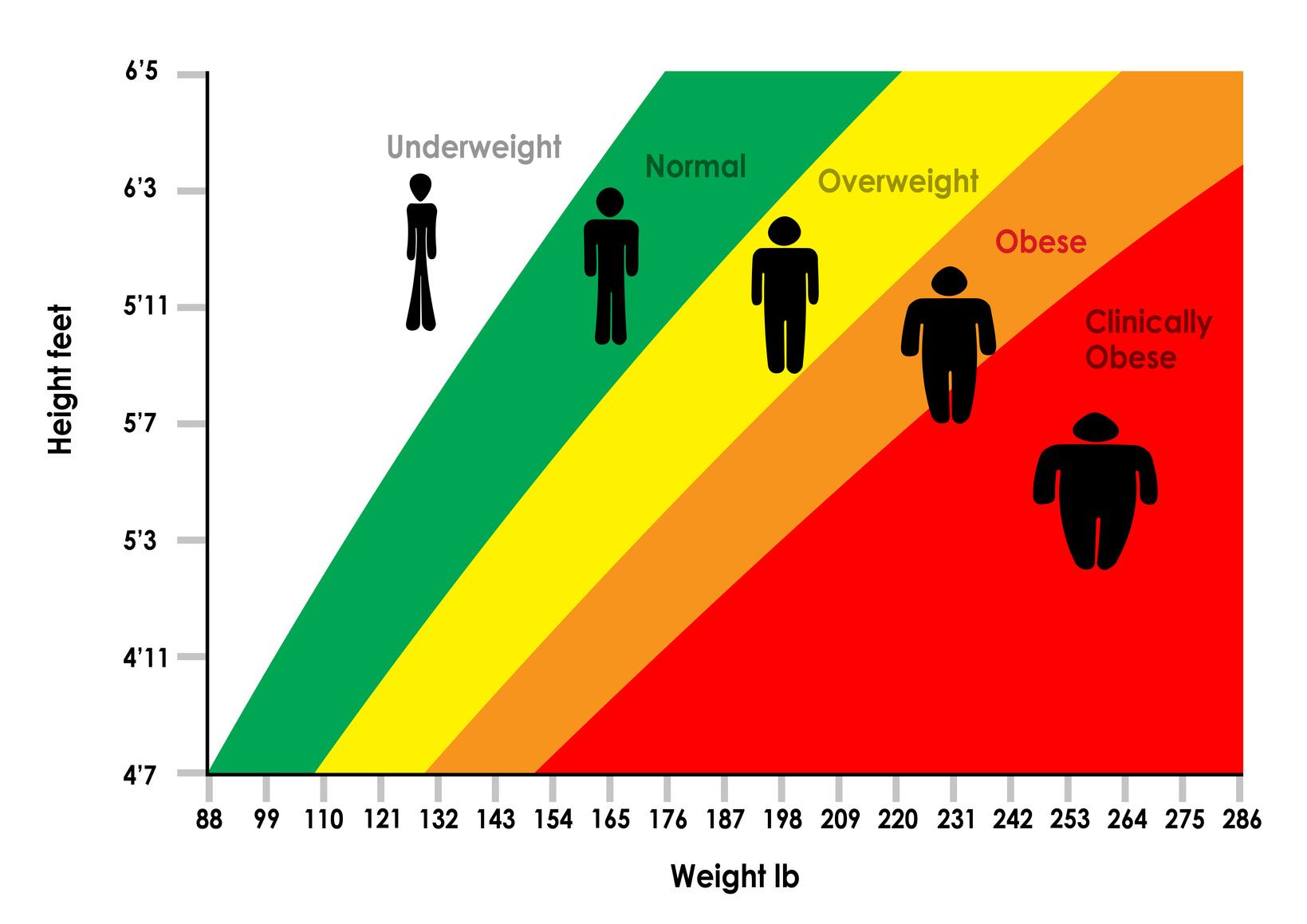 The Link Between BMI & Longevity…
